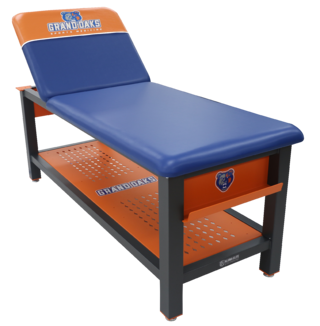 Aluma Elite Treatment Table