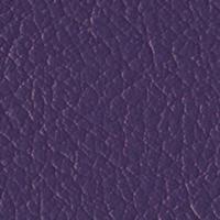 Purple Passion copy2