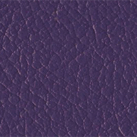 Purple Passion copy2